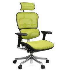 Кресло Comfort Seating Ergohuman Plus Green для руководителя, эргономичное, сетка, цвет зеленый