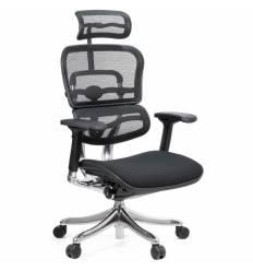Кресло Comfort Seating Ergohuman Plus Black для руководителя, эргономичное, сетка/ткань, цвет черный