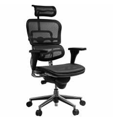 Кресло Comfort Seating Ergohuman Standart Black для руководителя, эргономичное, сетка, цвет черный