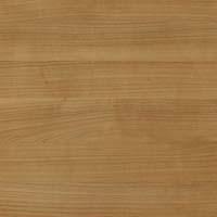 Дерево - миланский орех