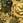 Детская ткань - HY362 Лев